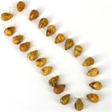 Picture Jasper Briolette 18mm x 12mm Str 22 beads-beads incl pearls-Beadthemup
