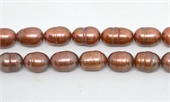 Fresh Water Pearl Rice 13-14mm Copper approx 29-beads incl pearls-Beadthemup